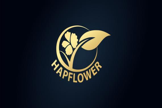 Ghép đơn mỹ phẩm HapOwner đang sở hữu những dòng thương hiệu mỹ phẩm spa nào?